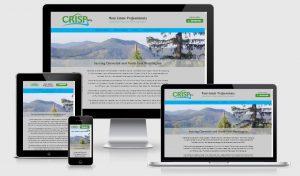 example responsive website