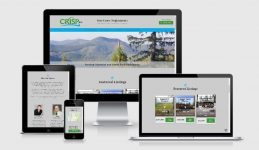 website design for real estate brokerage